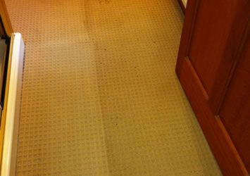 Domestic carpet cleaning around Ellon